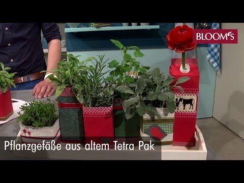 Photo of Design plantasjer fra Tetra-Paks – smart idé for mini urtehage og andre planter