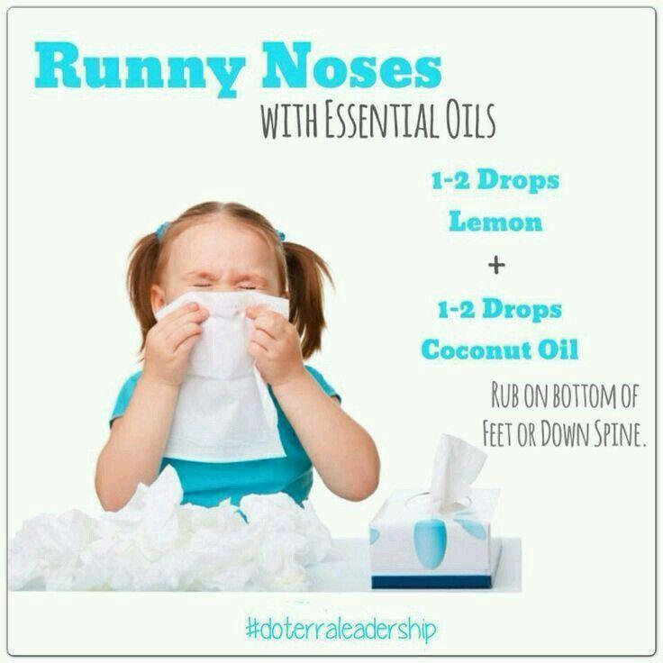 Eo For Running Nose Oils Boys Essential Oils Doterra