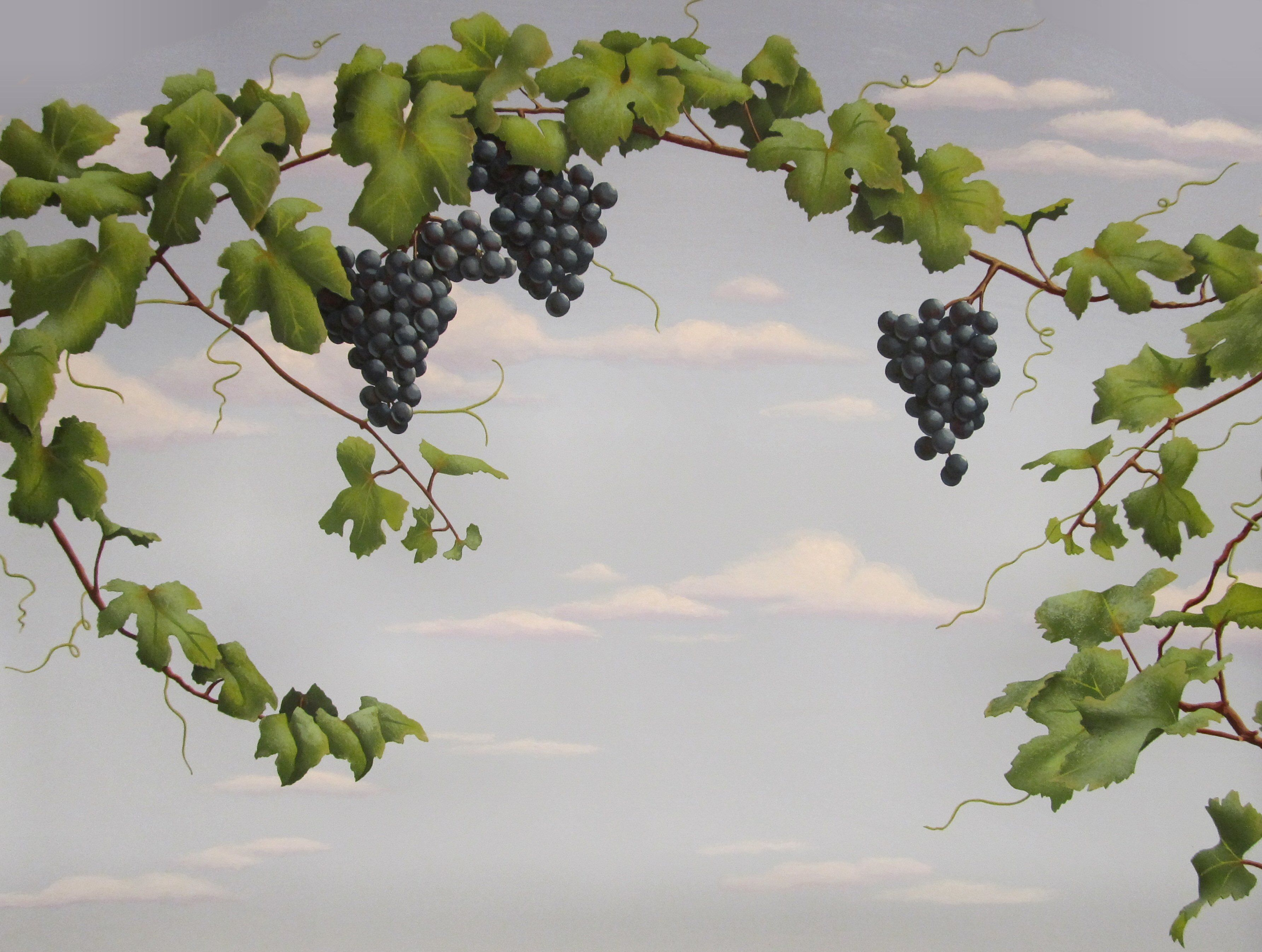 Our Grapes And Grapevine Stencils Grape Painting Grape Vines