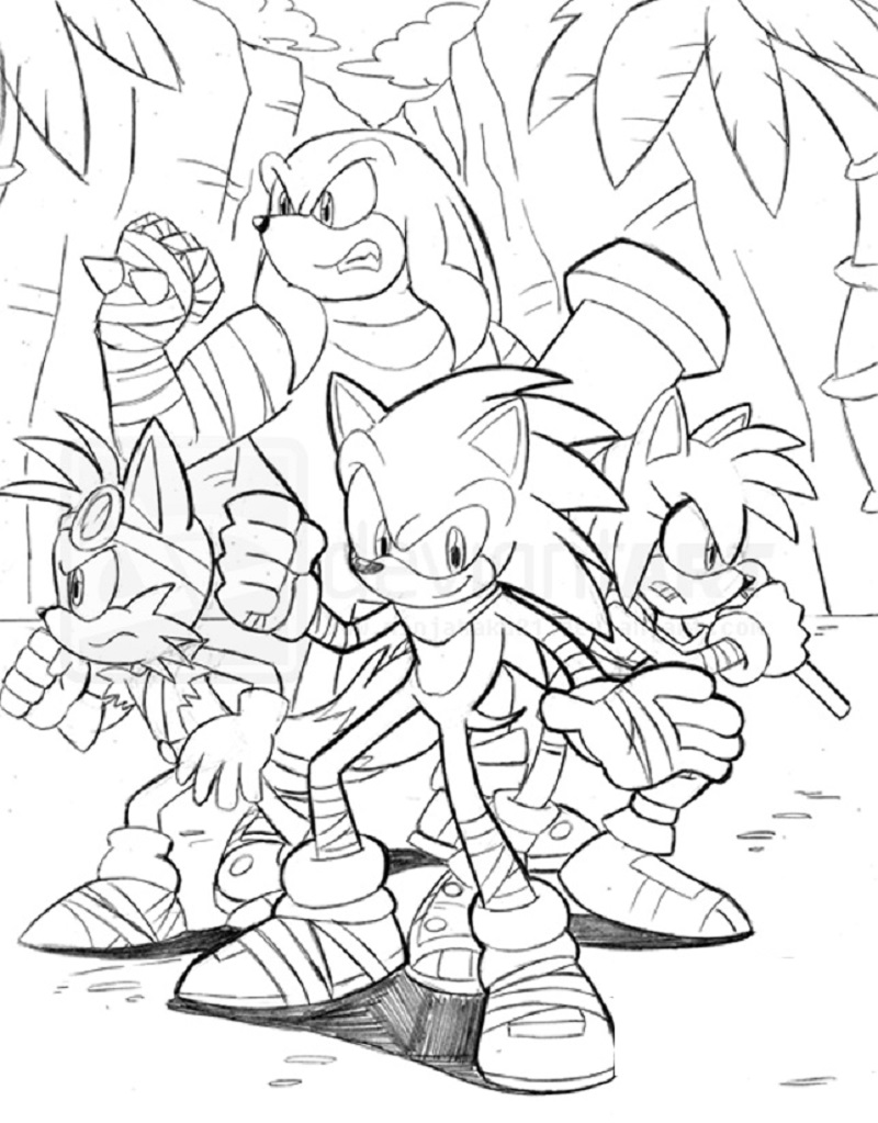 Sonic Boom Coloring Pages Usable Educative Printable In 2020 Coloring Pages Super Coloring Pages Sonic Boom