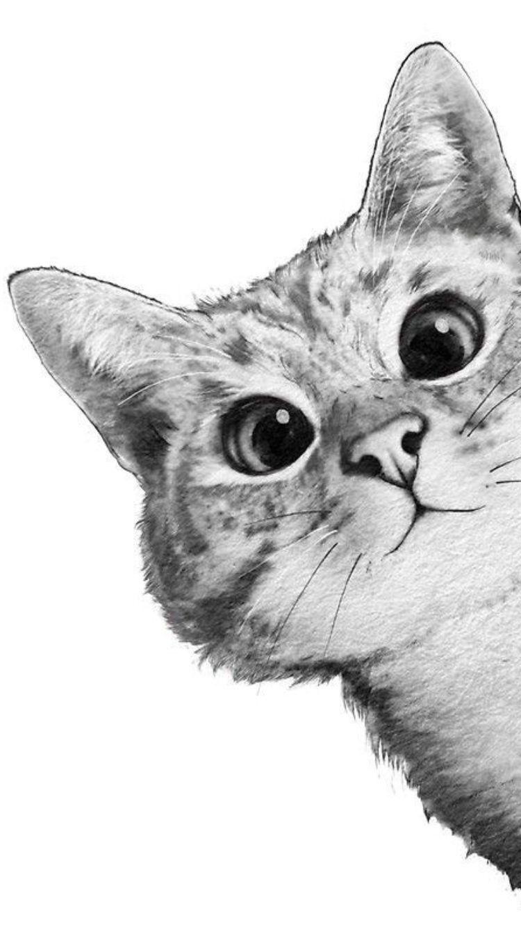 Chat Alors Illustration De Chat Dessin Chat Dessin Kawaii Animaux
