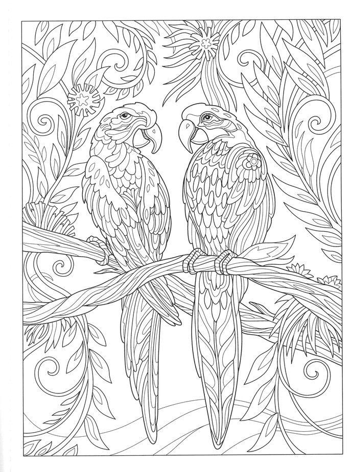 Product Slideshow Bird Coloring Pages Mandala Coloring Pages Coloring Books