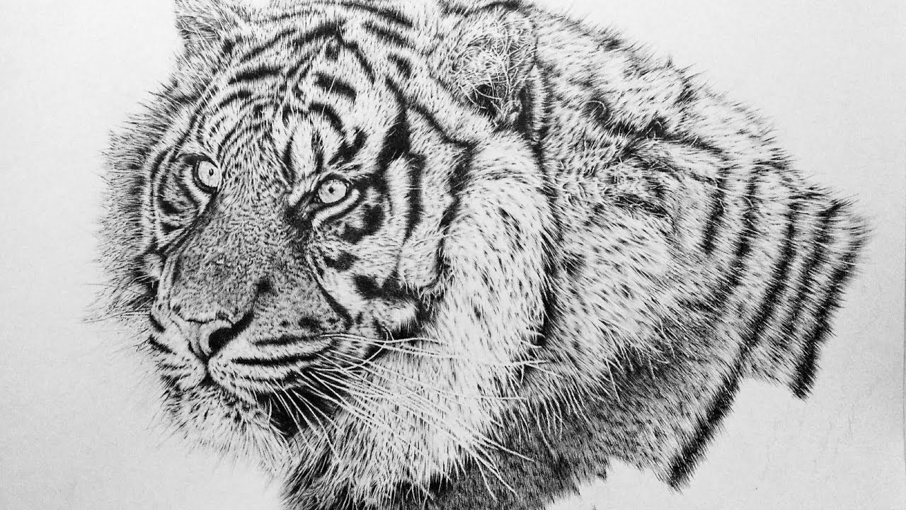 how to draw realistic animal fur explained by autistic artist