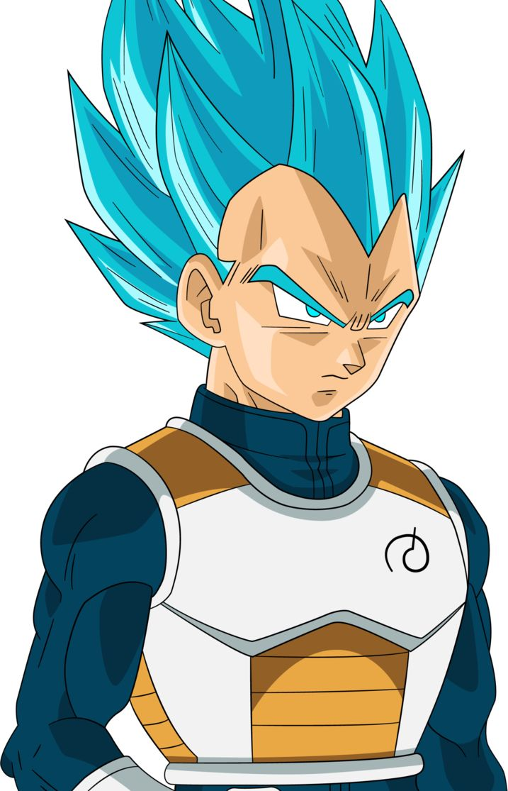 Dragon Ball Z Super Saiyan Blue Vegeta By Righteousaj On