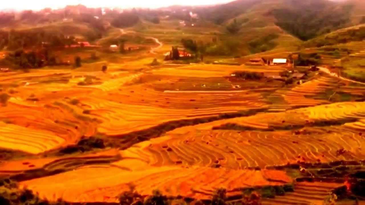 Paron En El Canal Por Mi Viaje A Vietnam Vietnam La Huertina De Toni Canales