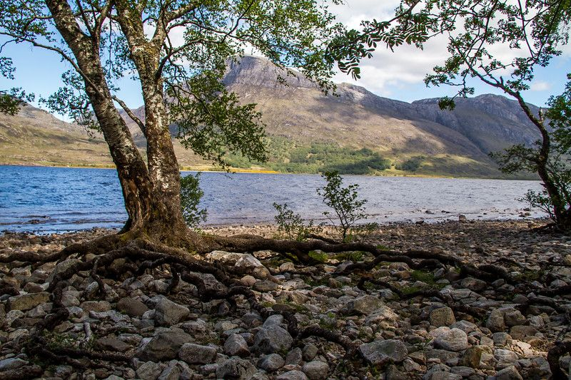 Shores of Loch Maree Scotland 2