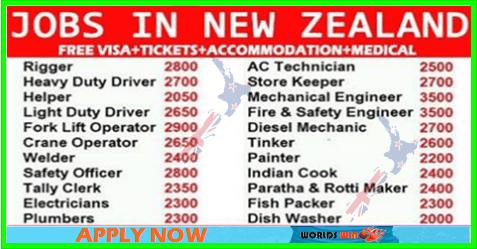 New Jobs In New Zealand Apply Now New Zealand Jobs New Job Job