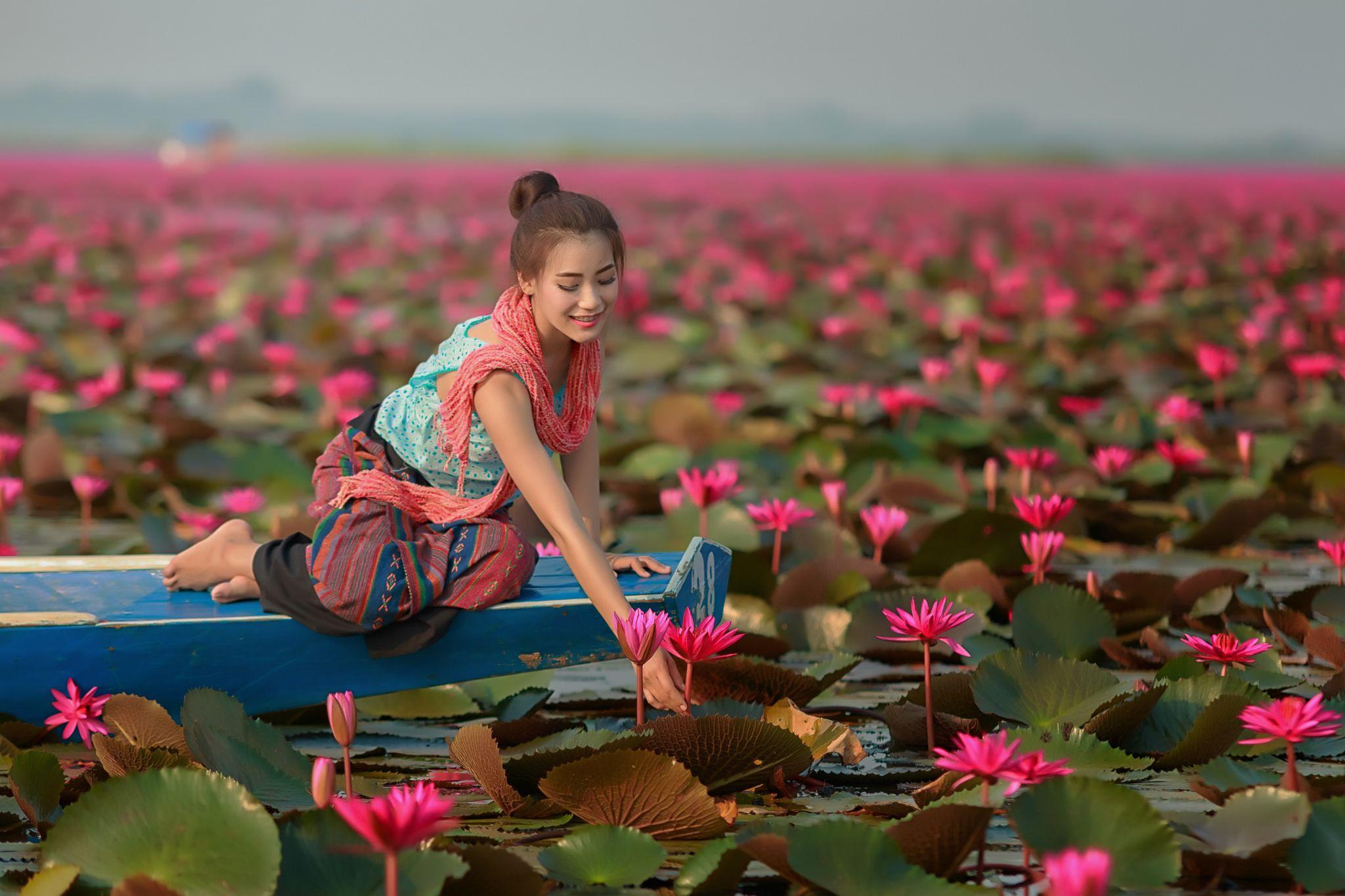 Beautiful girl sitting in boat in the lotus field | Thai lady ...