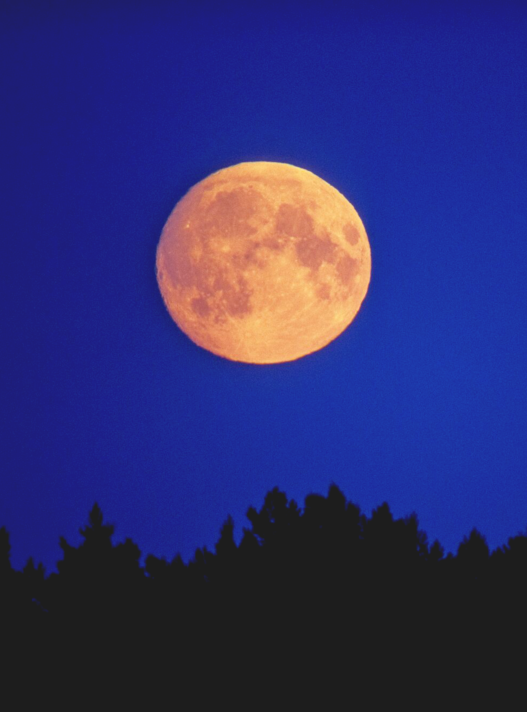 What Does It Really Mean When The Full Moon Is In Your Sign Refinery29