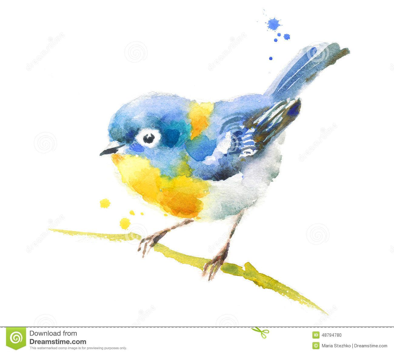 Hand Painted Watercolor Illustration Of Blue Bird On The Branch On