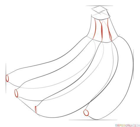 How to draw a bunch of bananas step by step. Drawing