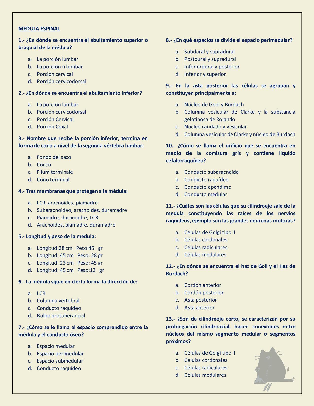 Cuestionario Neuroanatomia - Docsity | exámenes anatomía | Pinterest