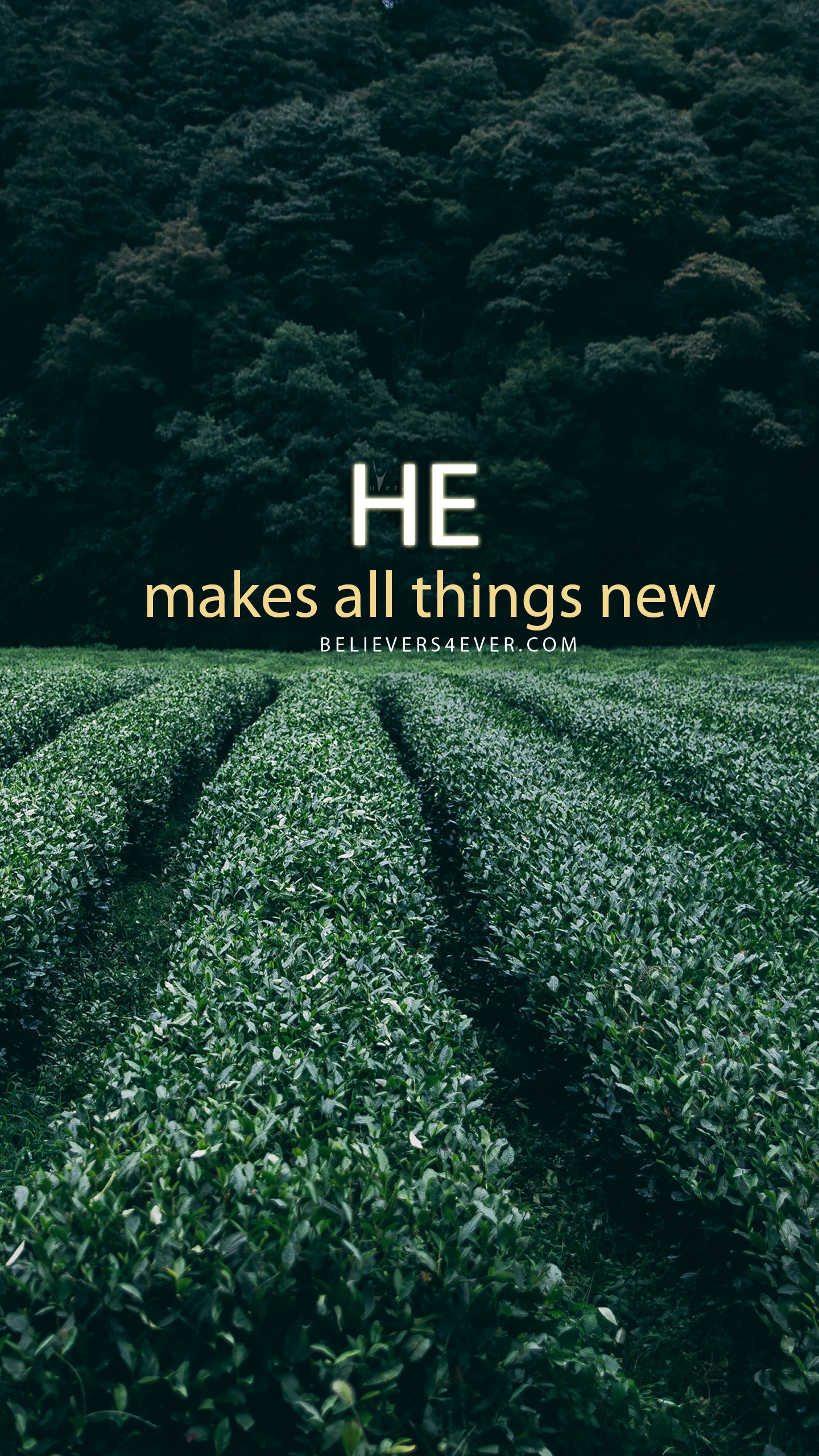 He makes all things new Christian wallpaper, Christian