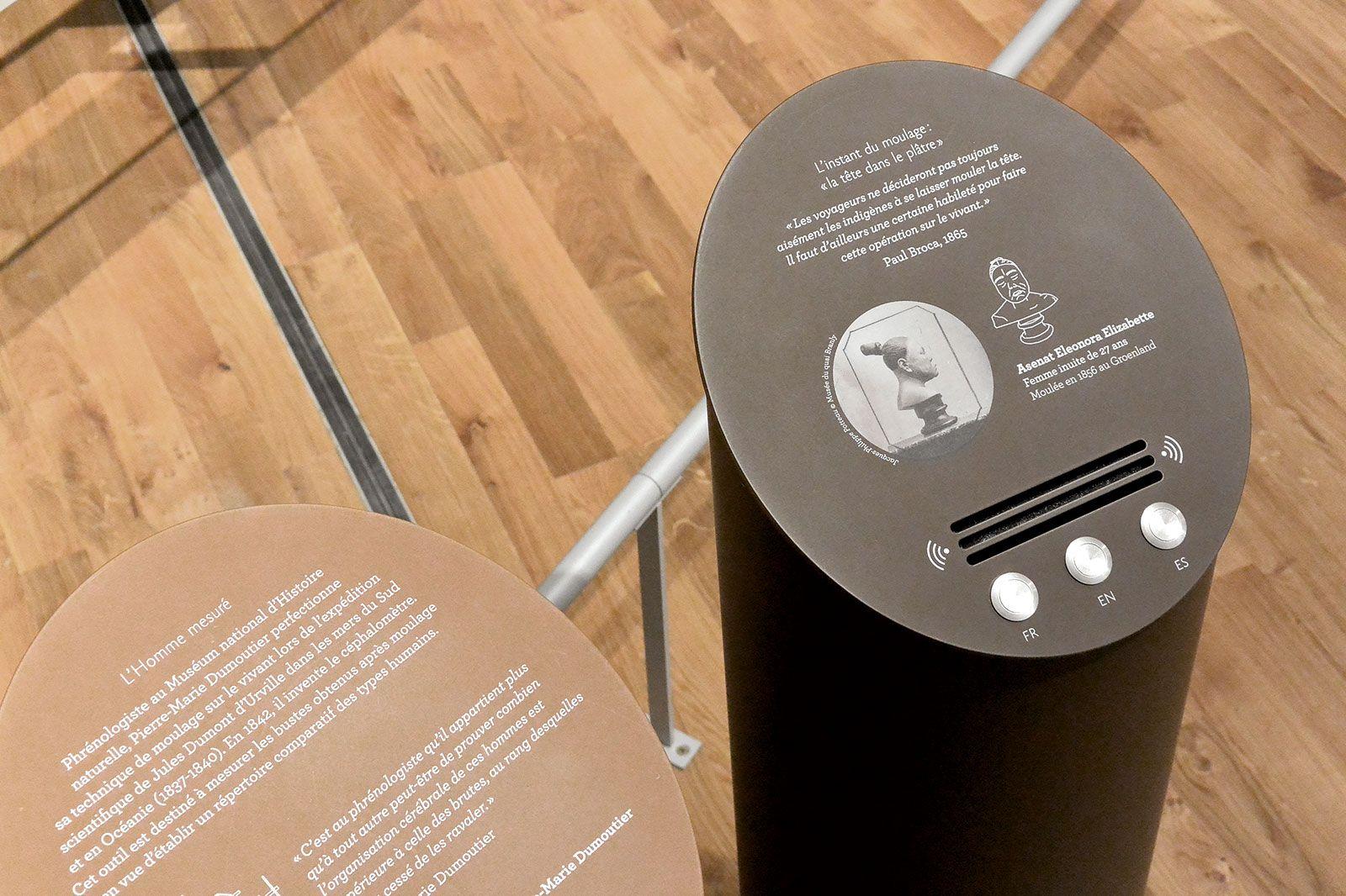 Musee De L Homme Graphisme Et Signaletique De L Exposition Permanente Graphisme Signaletique Palais De Chaillot
