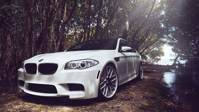 Bmw M5 F10 White Car In Forest High Definition Wallpapers Hd