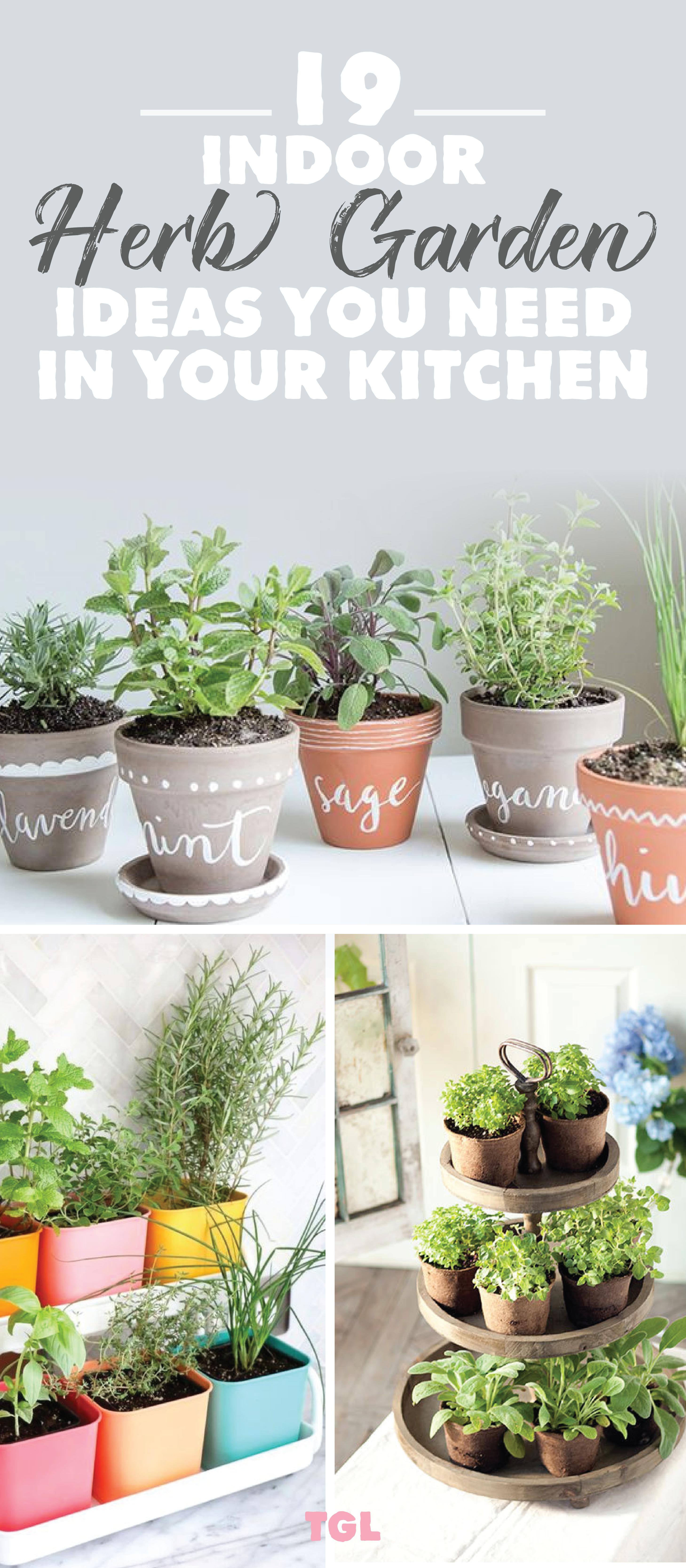 Indoor Herb Garden Diy Herb Garden Ideas Indoor Garden Ideas For Beginners Low Light Lot Indoor Herb Garden Diy Indoor Herb Garden Herb Garden In Kitchen