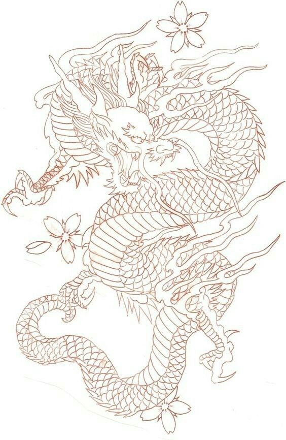 Line Drawing Dragon Tattoo : Pin by robert mitchell on tattoo pinterest