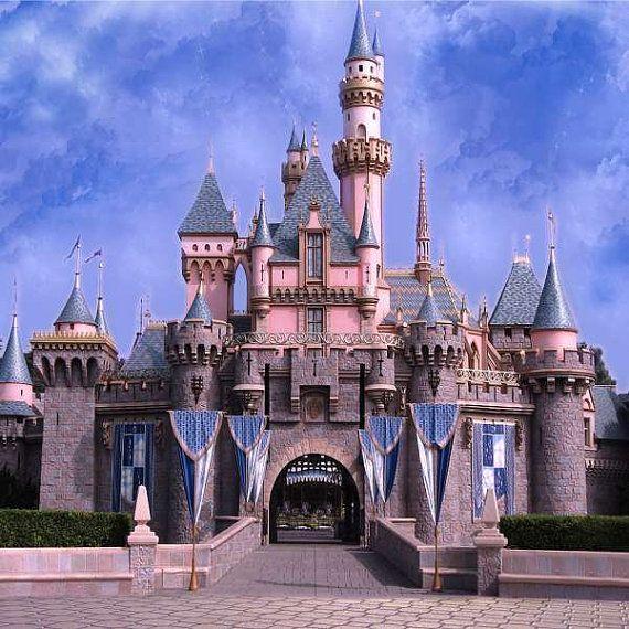 Beautiful Castle Backdrop Computer Printed Photography Etsy In 2021 Castle Backdrop Disneyland Castle Photography Backdrops