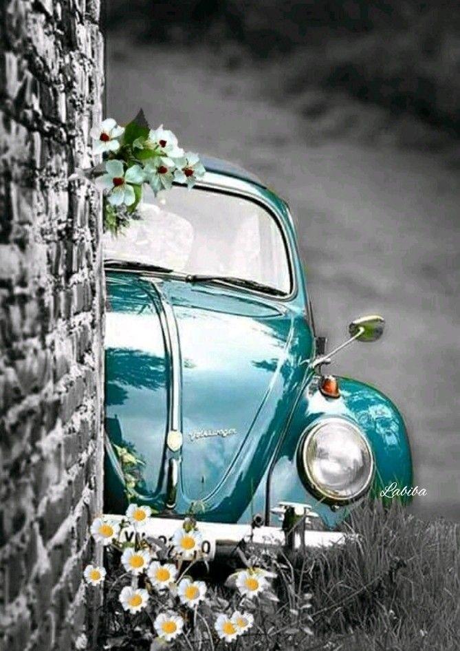 Pinterest Kaycookie03 Cute Cars Volkswagen Vintage Cars