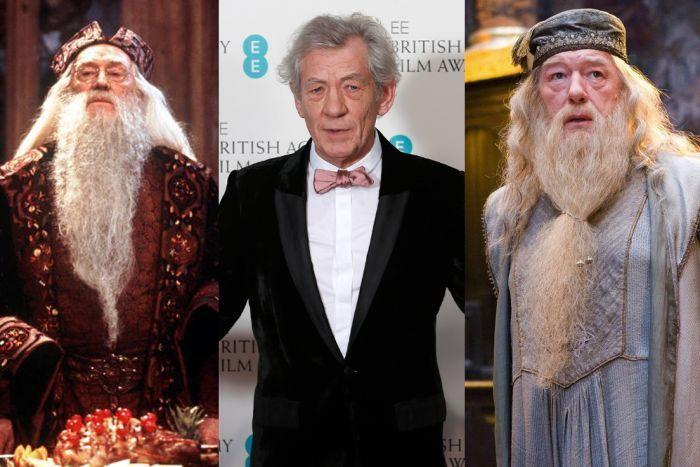 Ian Mckellen Reveals Why He Didn T Play Dumbledore Sir Ian Mckellen Ian Mckellen Michael Gambon