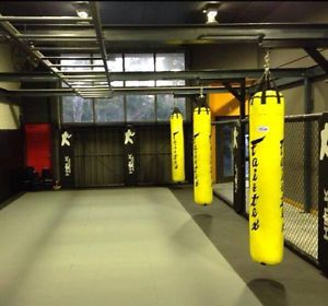 Genuine Fairtex 6ft Muaythai Kick Boxing K1 Banana Bag Unfilled Limited Color Ebay Muay Thai Bag Banana Bag Martial Arts Punching Bag