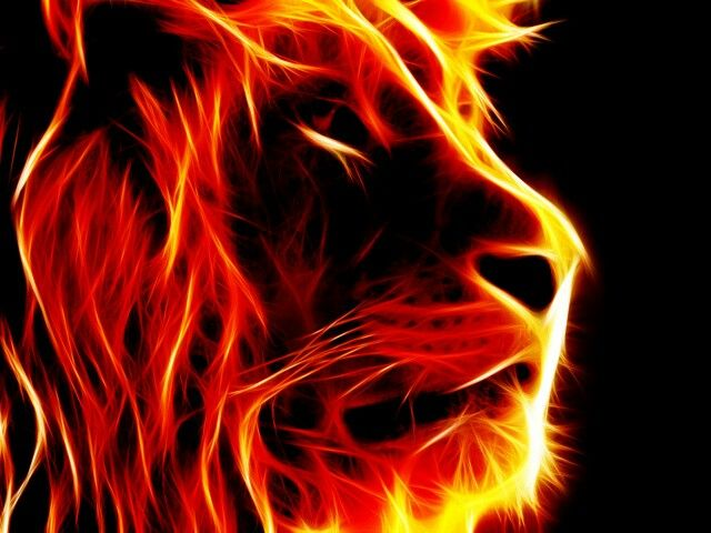 Flame Lion