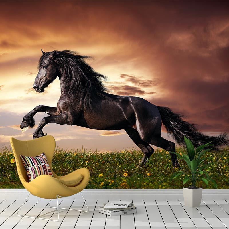 Paarden Behang Posterbehang.Fotobehang Fries Paard In Galop Meisjes Paarden