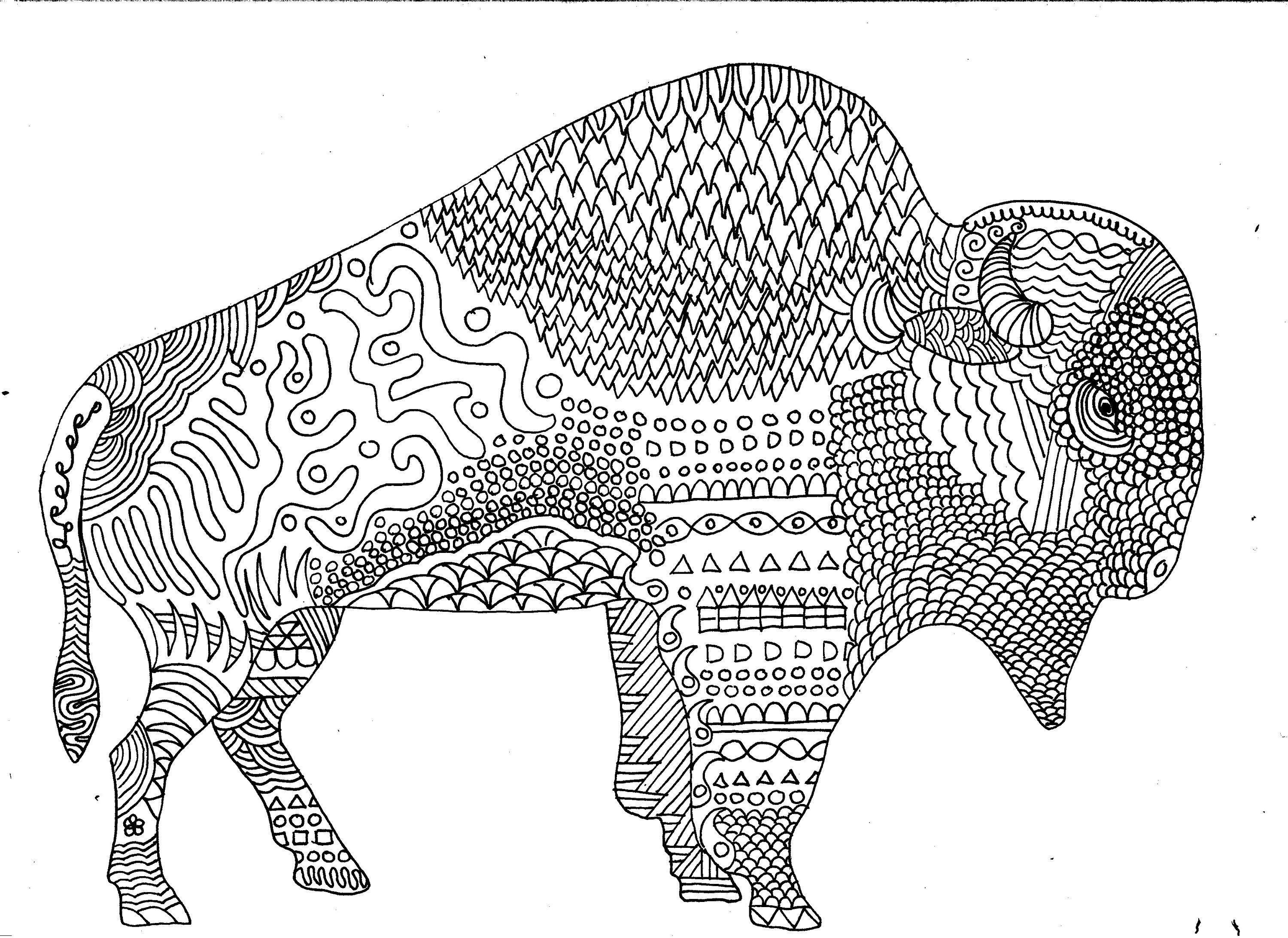 Bison Colouring Page Buffalo Colouring Page Digital Download
