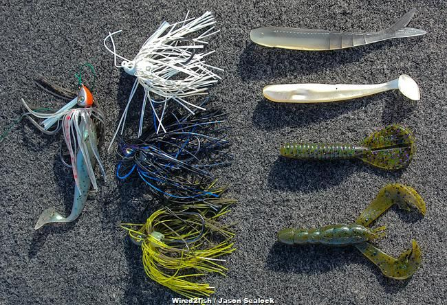4 tips to fish a swim jig all year wired2fish scout for Wired 2 fish