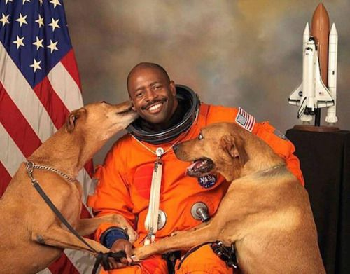 spaceexp:  Astronaut Leland Melvin Includes His Rescued Dogs in...