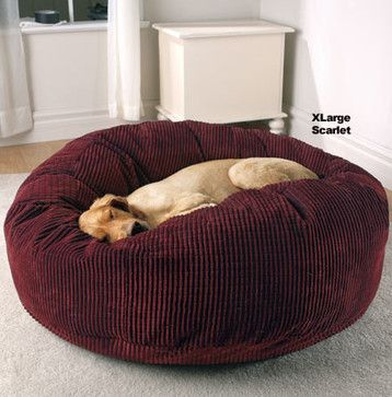 Deluxe Warm Cuddly Slumber Ball Contemporary Pet Accessories Other Metro Doctors Foster And Smith