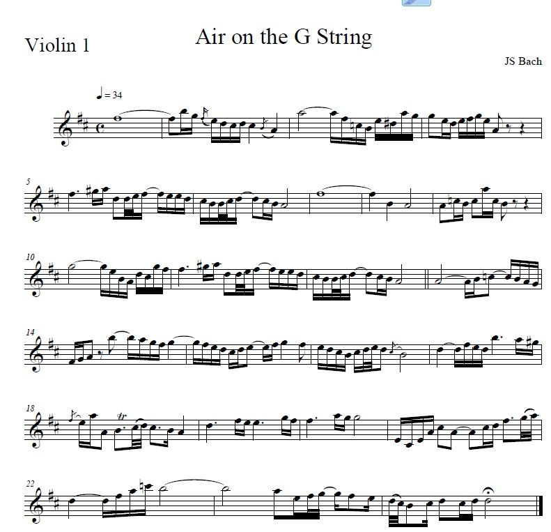 Air On The G String 1st Violin Part