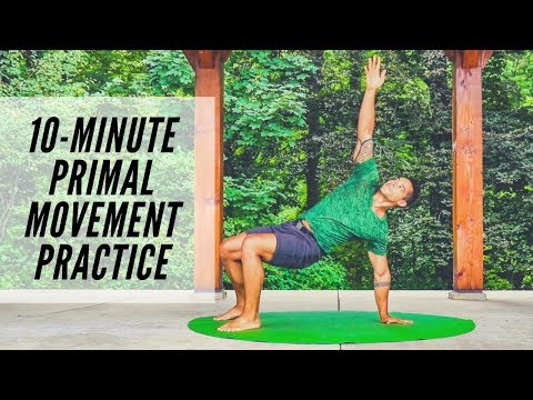 80 simple primal fitness / bodyweight workout for
