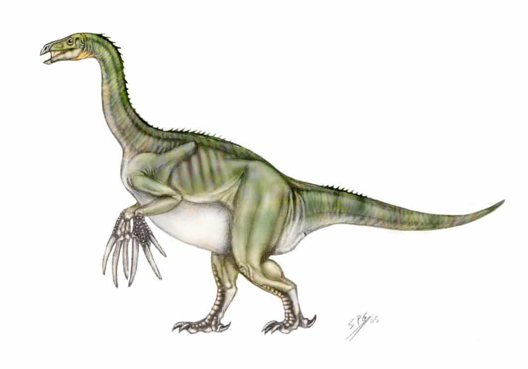 Therizinosaurus Animales Prehistoricos Dinosaurios Omnivoros De tamaño similar a un gallo, se alimentaba de. pinterest