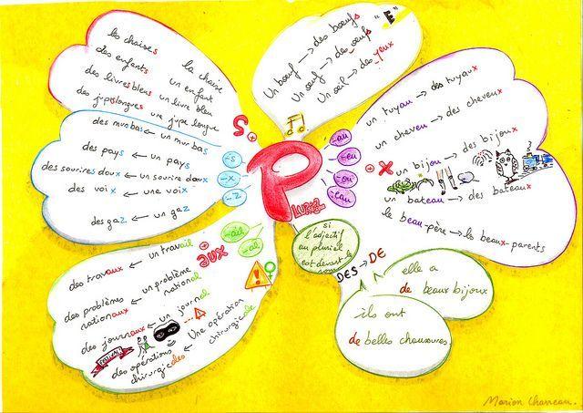 Carte Rona Accord D.Pluriel Des Noms Et Adjectifs Carte Heuristique French Grammar