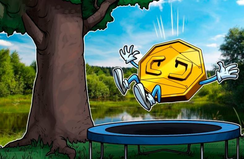 CTO Coinbase количество владельцев криптовалют вырастет в
