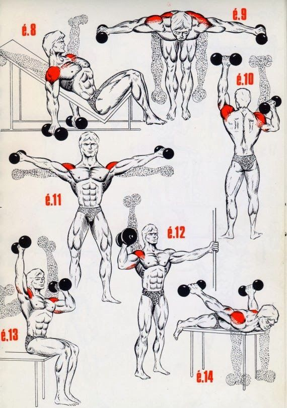 This A Simple Exercises For The Begining S Bodybuilding Fitness Bodybuilding Shoulder Workout Bodybuilding Workouts Workout Routine