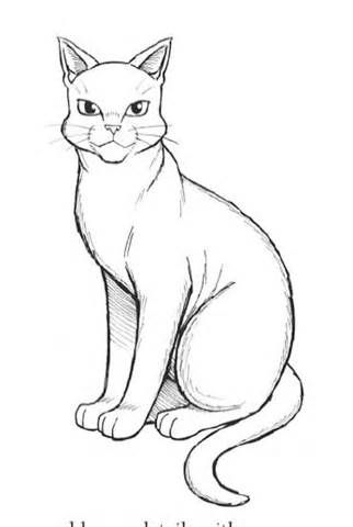 Image Result For Warrior Cats Coloring Pages Cat Coloring Page Warrior Cat Manga Cat