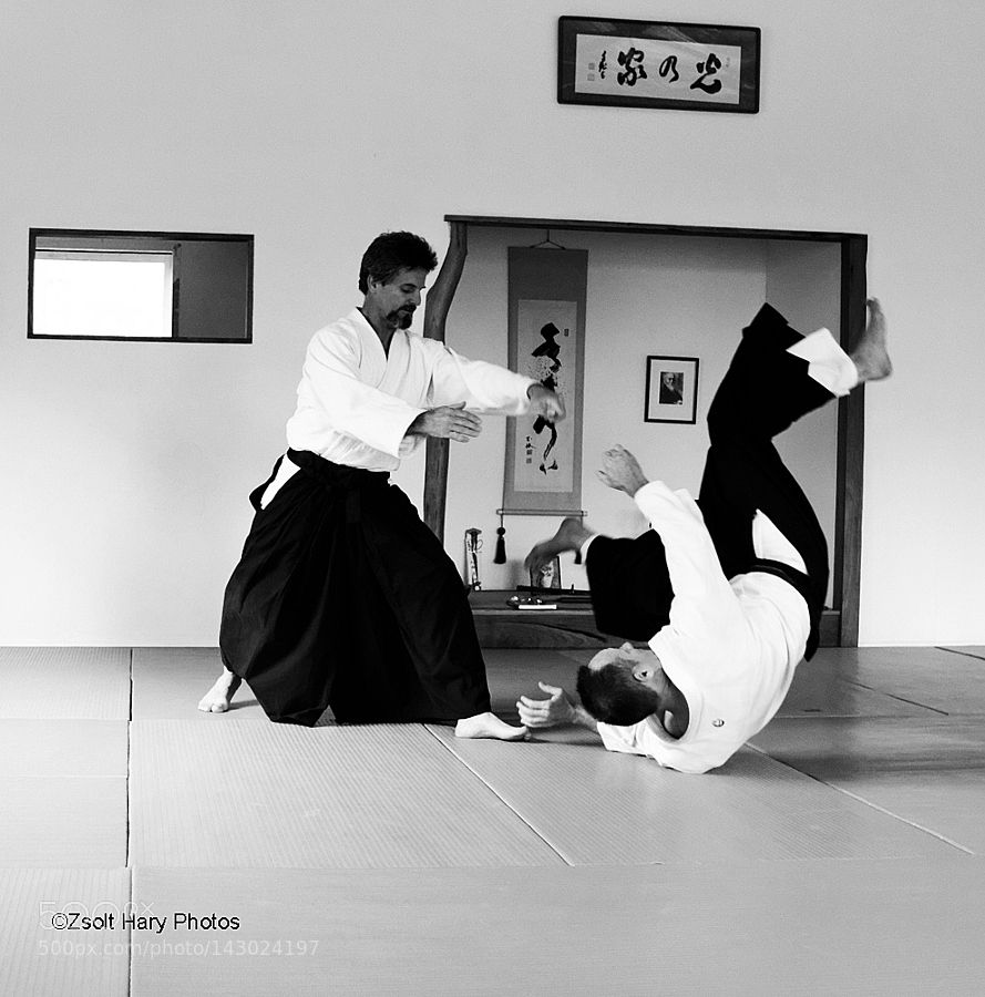 Aikido by zsoltharyphotos
