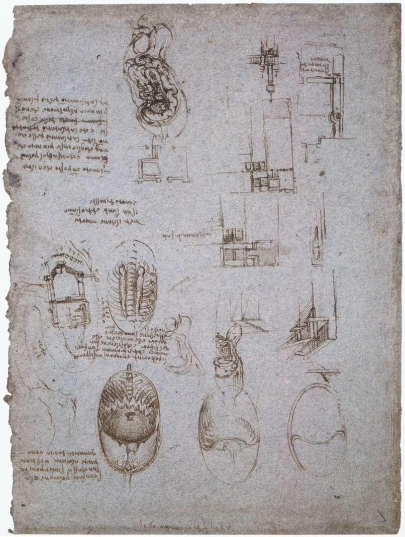 Studies of the Villa Melzi and anatomical study, 1513 - Леонардо да ...