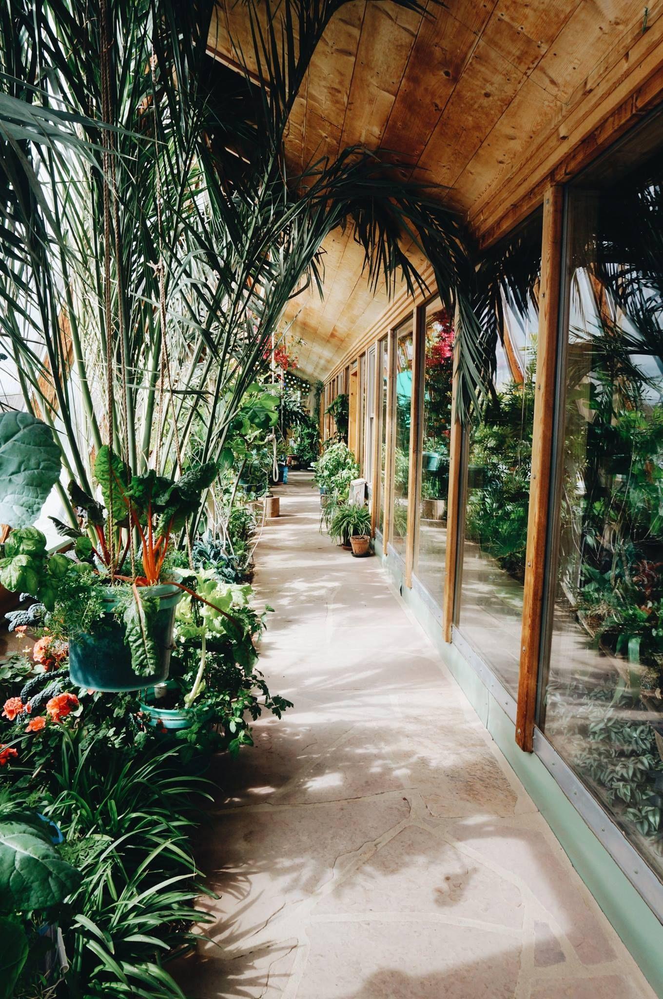 Pin On Indoors: Earthship Home, Earthship, Indoor Garden