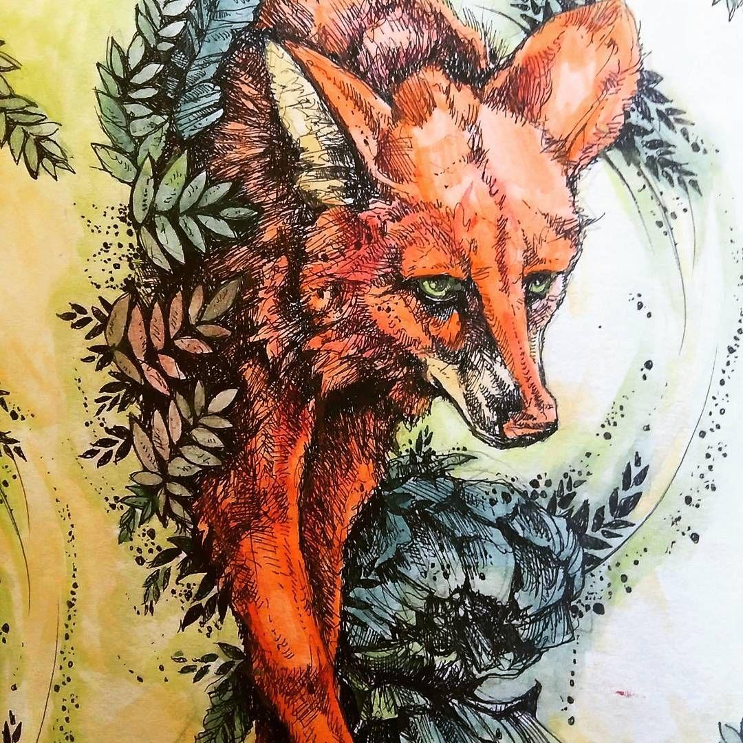 24 Stopnie W Lodzi Laaa Fox Drawing Podrugiejstroniesnu Colour Watercolor Kolorowamafia Sztukakolorowania Love Amazing P Drawing Kolorowanka Sztuka