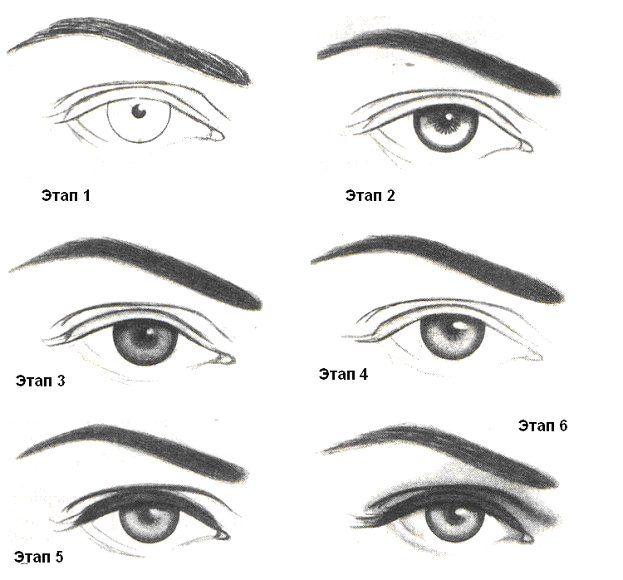 тут поэтапные картинки как нарисовать брови человека карандашом расскажем