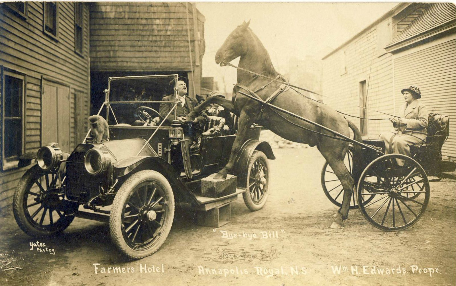 RPPC Postcard Annapolis Hotel Nova Scotia Ford Model T Car Horse ...