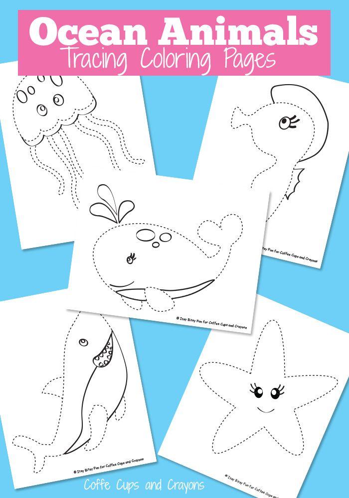 ocean coloring pages for preschool - ocean animals tracing coloring pages ocean animal and