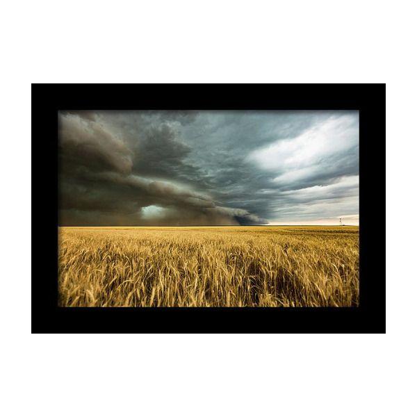 Earth Mover Storm Advances Over Wheat Field In Colorado