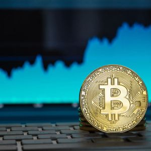 Secrets of how to invest in bitcoin