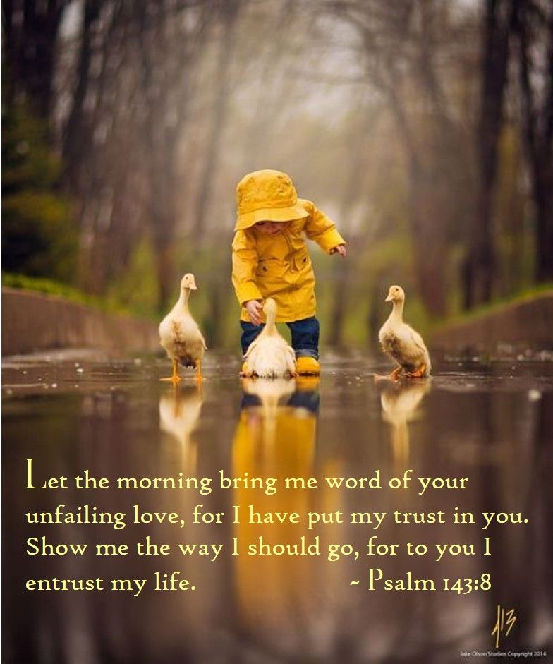 Cute Rainy Day Quotes: #bible #Psalm143:8 #Jesus