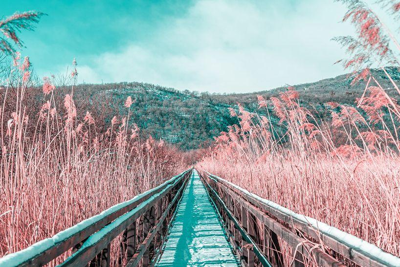 paolo pettigiani photographs italian landscapes in infrared