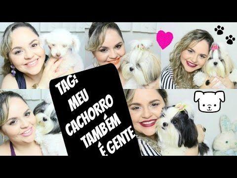 TAG: Meu Cachorro Também é Gente! #DogsdaLói (CADELINHAS SHIH TZU E P...